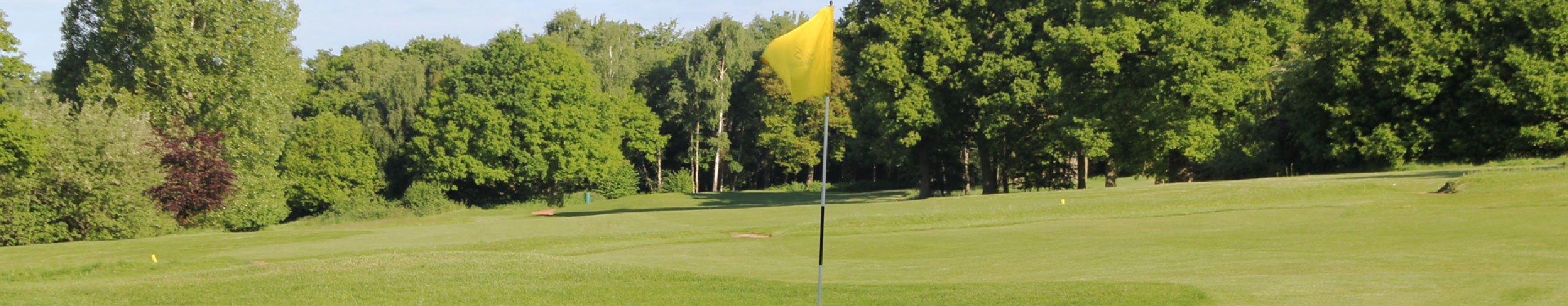 Golf course yellow flag